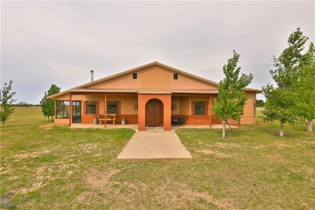 5787 County Road 499, Anson, TX 79501 (MLS #14068848) :: The Tonya Harbin Team