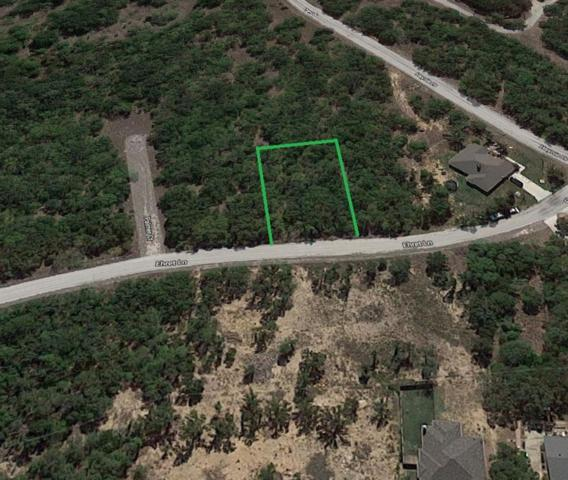 TBD Ehret Lane, Runaway Bay, TX 76426 (MLS #14068961) :: The Mitchell Group