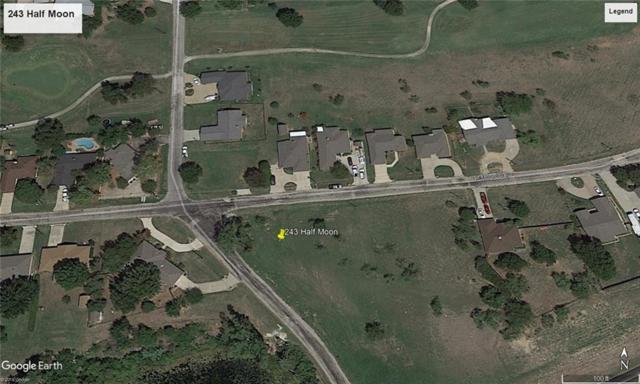 243 Half Moon Way, Runaway Bay, TX 76426 (MLS #14069001) :: The Mitchell Group