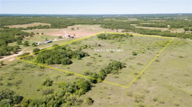 03 County Road 3473, Paradise, TX 76073 (MLS #14069318) :: The Hornburg Real Estate Group