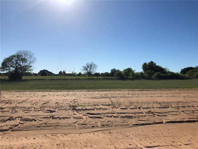 313 Proctor Lane, Decatur, TX 76234 (MLS #14069688) :: RE/MAX Town & Country
