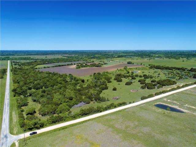 6700 County Road 410, Purmela, TX 76566 (MLS #14069852) :: The Kimberly Davis Group
