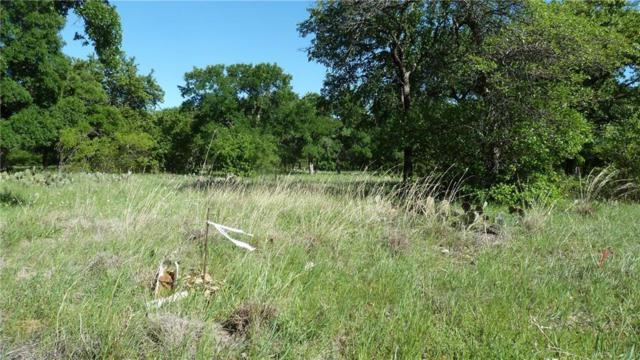 196 Ridgeline Drive, Chico, TX 76431 (MLS #14070049) :: Robbins Real Estate Group