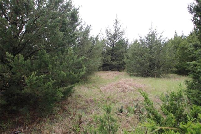 Lot 1 County Road 4730, Cumby, TX 75433 (MLS #14070641) :: All Cities Realty
