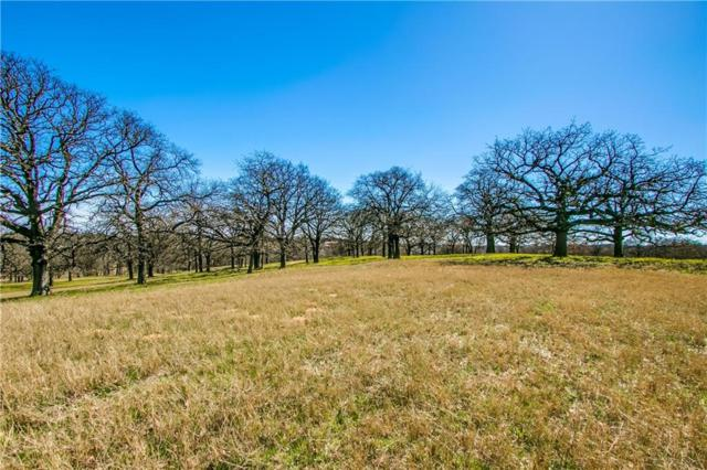 1506 Bluffview Drive, Westlake, TX 76262 (MLS #14070748) :: The Heyl Group at Keller Williams