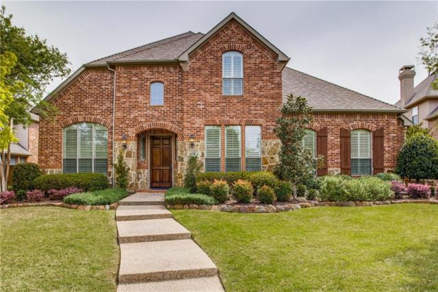 1333 Comal Drive, Allen, TX 75013 (MLS #14071079) :: The Rhodes Team