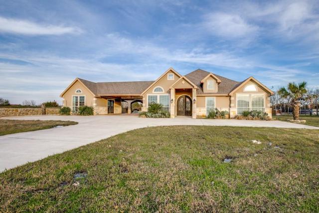 211 Willowcreek Lane, Rockwall, TX 75032 (MLS #14071207) :: North Texas Team | RE/MAX Lifestyle Property
