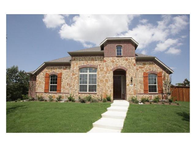 1066 Big Spring Drive, Allen, TX 75013 (MLS #14071402) :: Tenesha Lusk Realty Group