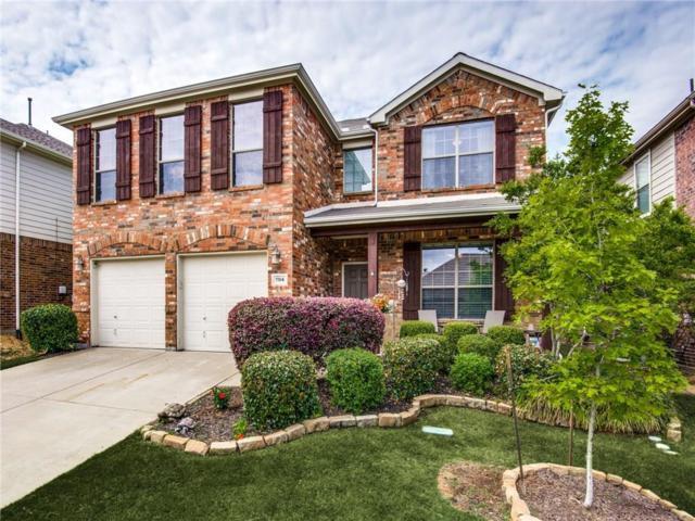 704 Lake Grove Drive, Little Elm, TX 75068 (MLS #14071558) :: Kimberly Davis & Associates