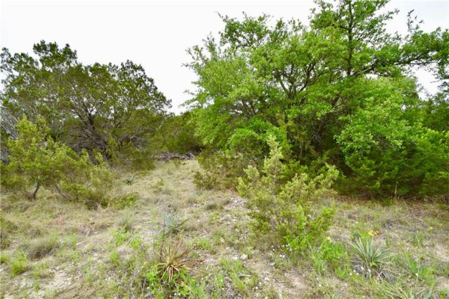 460 Blue Marlin, Bluff Dale, TX 76433 (MLS #14072037) :: The Hornburg Real Estate Group