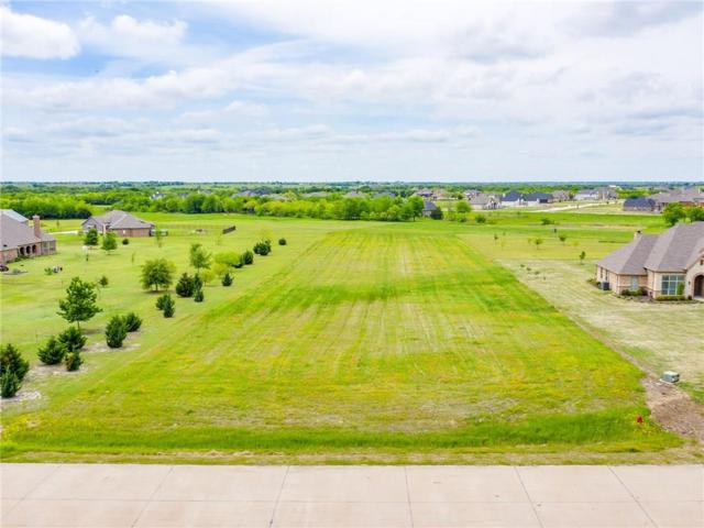 3050 Bridgecreek Drive, Rockwall, TX 75032 (MLS #14072139) :: The Chad Smith Team