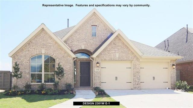 831 Esk Avenue, Celina, TX 75009 (MLS #14072246) :: Real Estate By Design