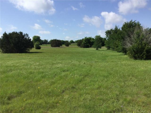 116 S Canyon Lake Drive, Aledo, TX 76008 (MLS #14072394) :: The Rhodes Team