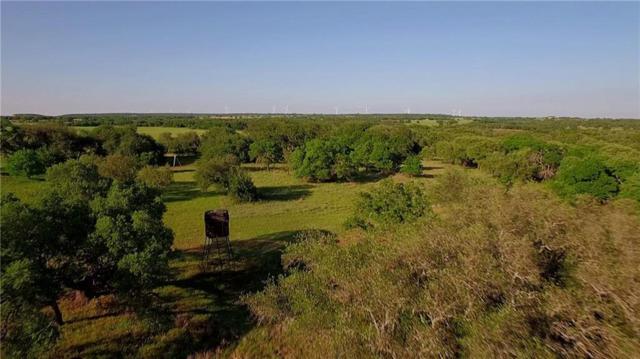 7778 County Road, Blanket, TX 76432 (MLS #14072531) :: The Tonya Harbin Team