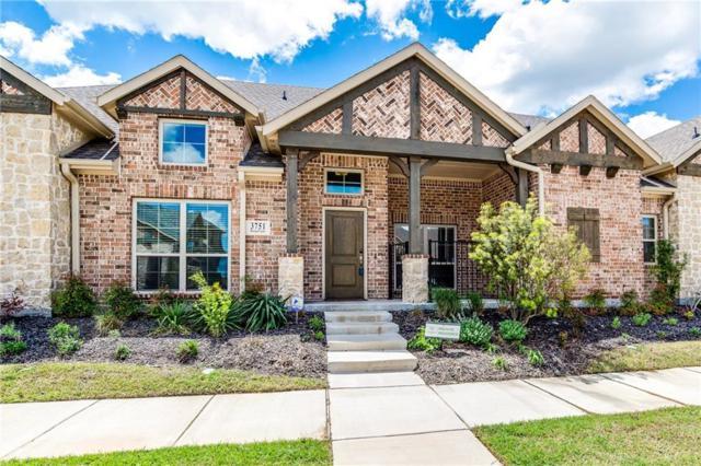 3751 Marigold Lane, Prosper, TX 75078 (MLS #14072678) :: The Heyl Group at Keller Williams