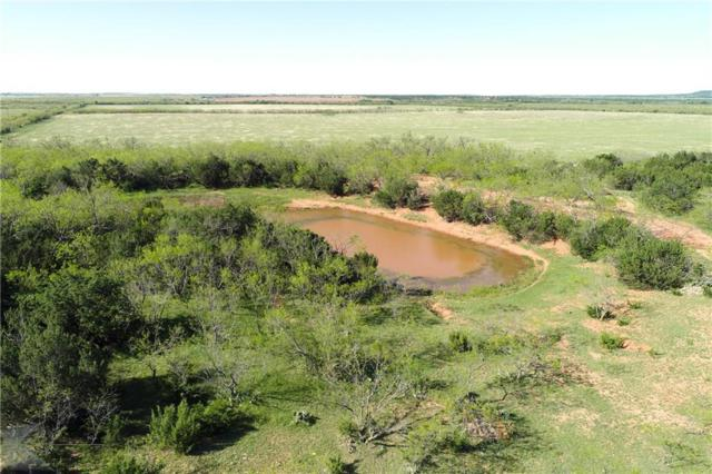 TBD County Road 194, Ovalo, TX 79541 (MLS #14072693) :: Robbins Real Estate Group