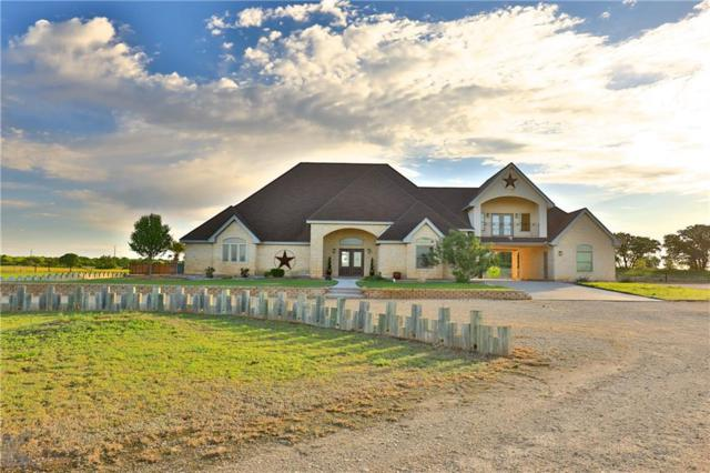 8600 Fm 707, Anson, TX 79501 (MLS #14072818) :: The Tonya Harbin Team