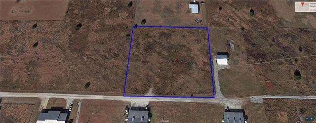 TDB Private Road 4207, Decatur, TX 76234 (MLS #14073373) :: The Hornburg Real Estate Group