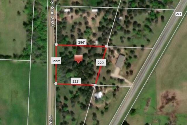 tbd County Rd 2025, Bonham, TX 75418 (MLS #14073879) :: Potts Realty Group