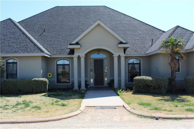 501 Bacacita Farms Road, Abilene, TX 79602 (MLS #14073982) :: The Paula Jones Team | RE/MAX of Abilene
