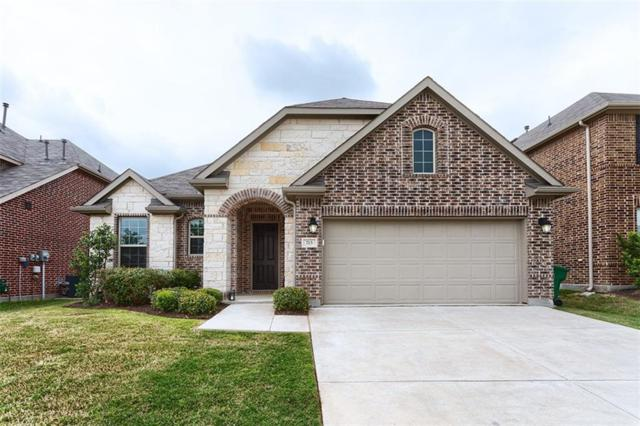 713 Sundrop Drive, Little Elm, TX 75068 (MLS #14074232) :: The Hornburg Real Estate Group