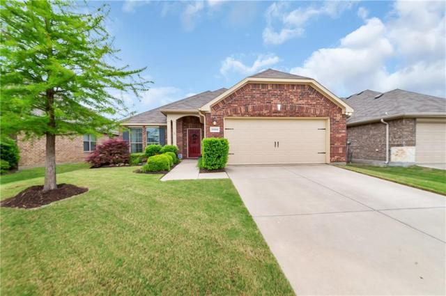 11908 Cape Cod Springs Drive, Frisco, TX 75036 (MLS #14075129) :: Baldree Home Team
