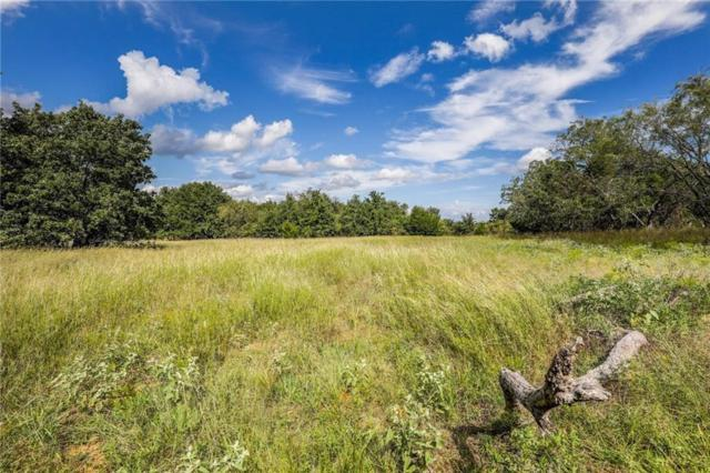 LT 1 Twin Oaks Lane, Boyd, TX 76023 (MLS #14075201) :: The Daniel Team