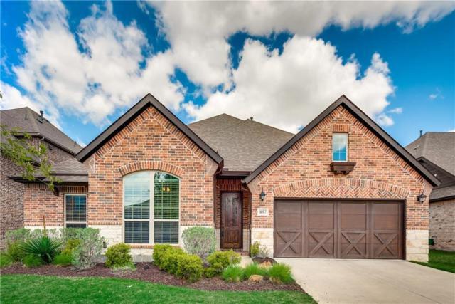 857 Fireside Drive, Little Elm, TX 76227 (MLS #14075299) :: Kimberly Davis & Associates