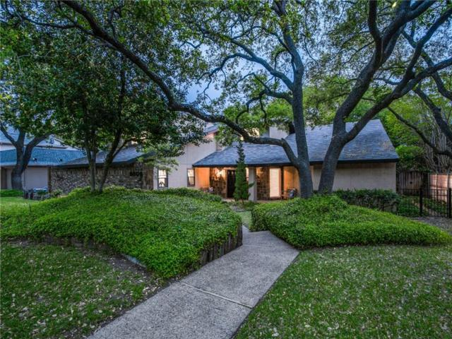 9509 Rocky Branch Drive, Dallas, TX 75243 (MLS #14075599) :: The Mitchell Group