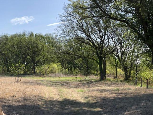 TBD Co Road 252, Rising Star, TX 76471 (MLS #14076942) :: RE/MAX Town & Country