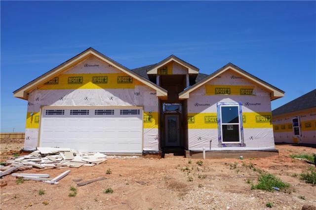 250 Martis Way, Abilene, TX 79602 (MLS #14078330) :: Ann Carr Real Estate