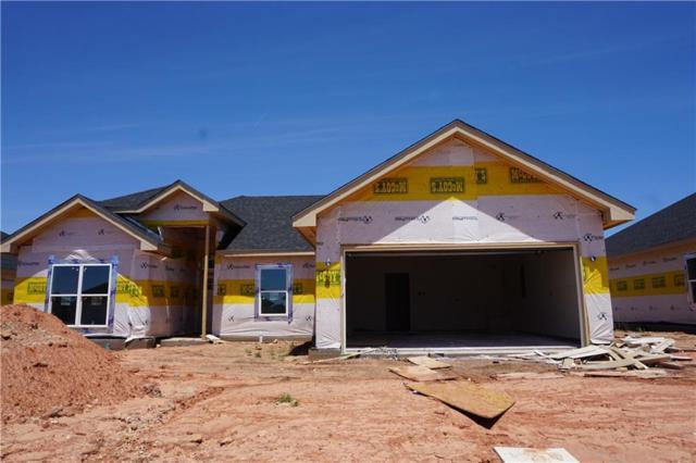 256 Martis Way, Abilene, TX 79602 (MLS #14078333) :: Ann Carr Real Estate