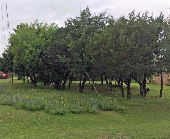 24009 Oak Shadow, Whitney, TX 76692 (MLS #14078699) :: The Mauelshagen Group