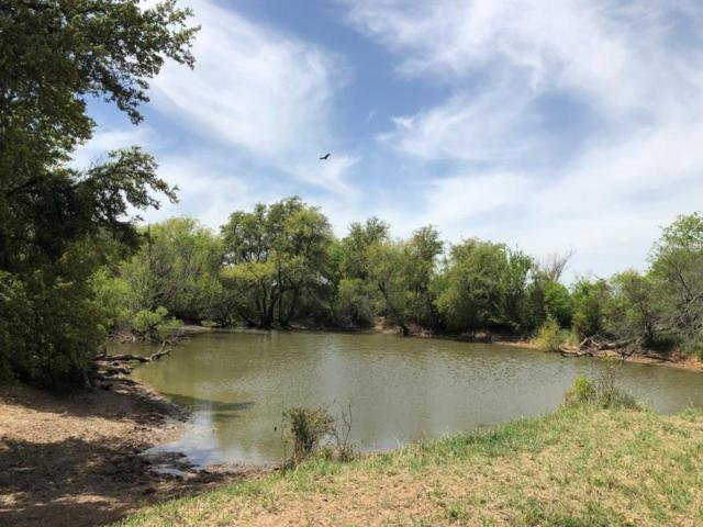 TBD Co Road 266, Rising Star, TX 76471 (MLS #14079124) :: RE/MAX Town & Country