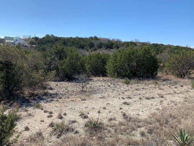 0 Blue Marlin, Bluff Dale, TX 76433 (MLS #14079195) :: RE/MAX Town & Country