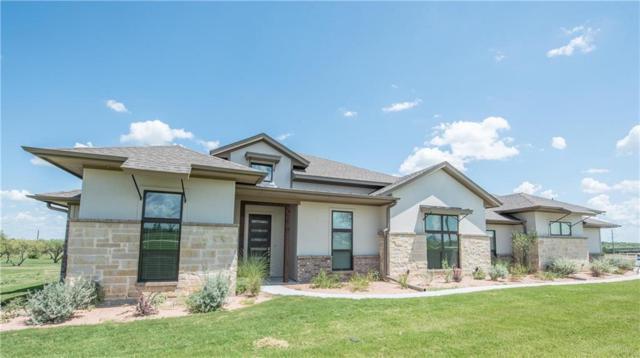 104 Maravilla Drive, Aledo, TX 76008 (MLS #14079608) :: Potts Realty Group