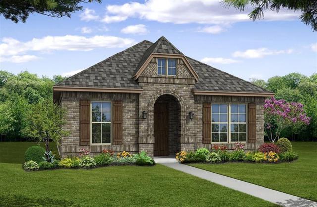 5317 Tuscarora Trail, Mckinney, TX 75070 (MLS #14079706) :: Kimberly Davis & Associates