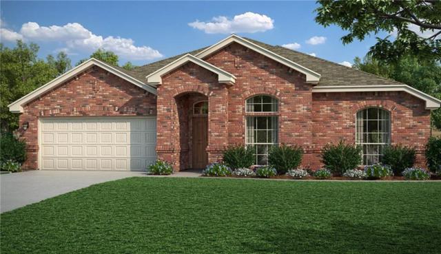 213 Marina Drive, Azle, TX 76020 (MLS #14079834) :: The Hornburg Real Estate Group