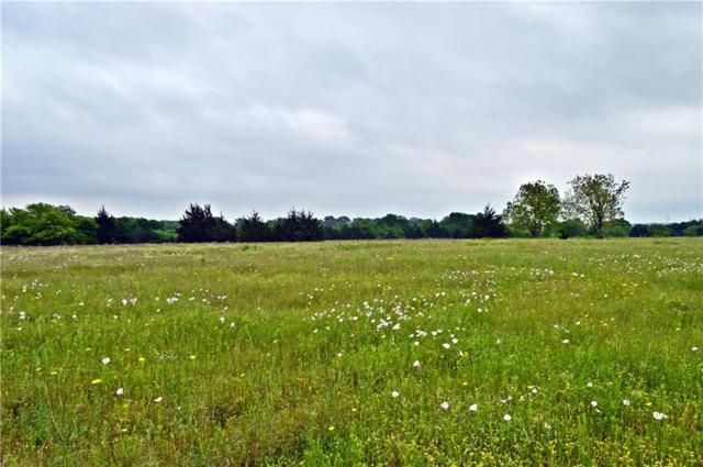995 County Road 5075 Lot 2, Leonard, TX 75452 (MLS #14079888) :: RE/MAX Town & Country
