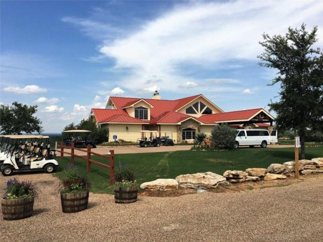 TBD Feather Bay Drive, Brownwood, TX 76801 (MLS #14081179) :: The Rhodes Team