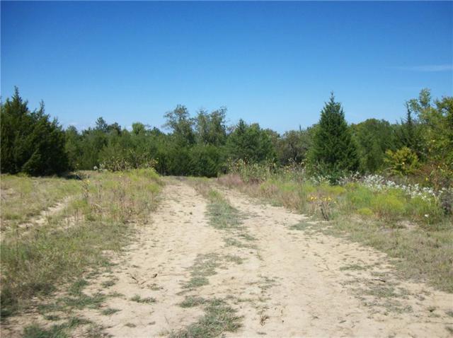 TBD Cr 3510, Pecan Gap, TX 75469 (MLS #14081649) :: RE/MAX Town & Country