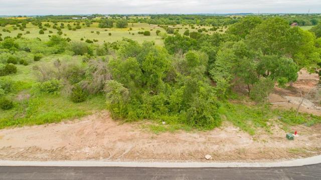 7152 Heathington Court, Granbury, TX 76049 (MLS #14083786) :: Real Estate By Design