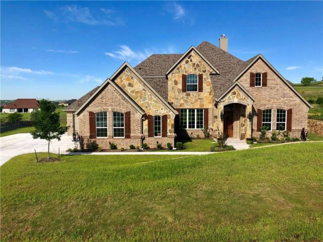 12448 Bella Vineyard Drive, Fort Worth, TX 76126 (MLS #14084209) :: Baldree Home Team