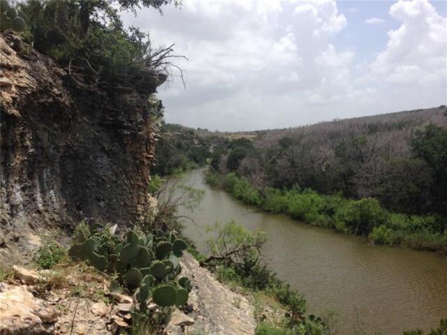 2044 Bluff Creek Drive, Strawn, TX 76475 (MLS #14084543) :: The Kimberly Davis Group