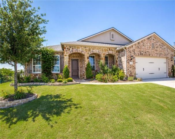 6385 Mobile Bay Court, Frisco, TX 75036 (MLS #14085035) :: RE/MAX Town & Country