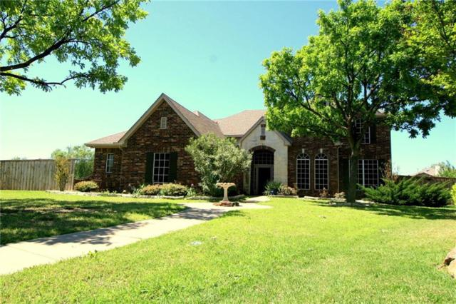 3821 Leeward Circle, The Colony, TX 75056 (MLS #14085374) :: The Hornburg Real Estate Group
