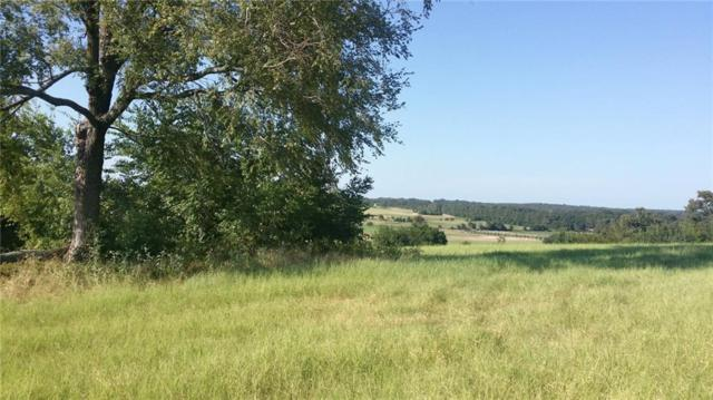 Lt139 Bridle View Court, Athens, TX 75752 (MLS #14085522) :: The Mitchell Group