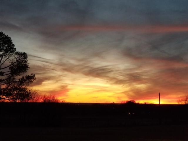1404 Isabella Court, Aurora, TX 76078 (MLS #14086105) :: Team Hodnett