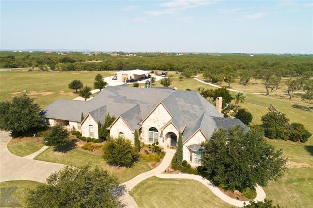 358 Southwind Circle, Abilene, TX 79602 (MLS #14086780) :: The Paula Jones Team | RE/MAX of Abilene