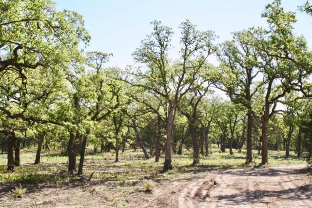 116 W Oakwood Hills Dr, Paradise, TX 76073 (MLS #14086966) :: Trinity Premier Properties